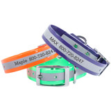 Reflective & Lighted Dog Collars